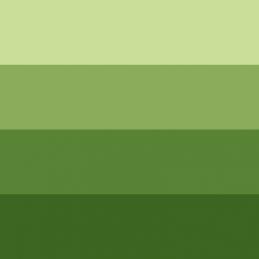 L&B Charbonnel inchiostri calcografici 200 ml. Serie 3 Verde medio